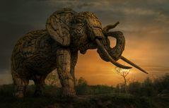 Der etwas andere Elefant ....