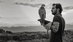 Der Falkenflüsterer