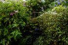 Der Fall im eigenen Garten