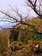 Der Fels (la roca)