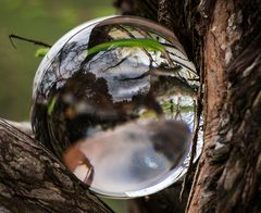 der fingerabdruck des glaskugelträgers