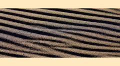 Der Fingerabdruck des Sandes