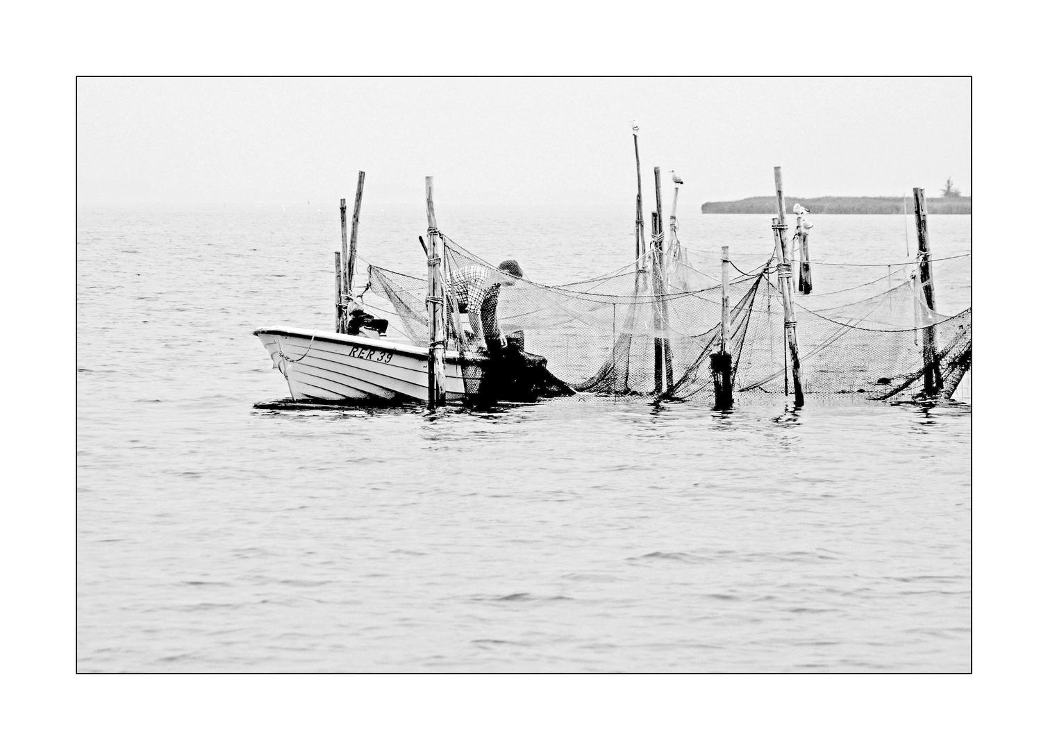 Der Fischer..
