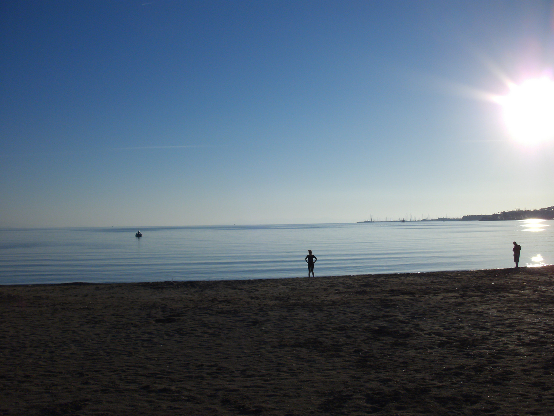 Der Fischer, Die Schwimmerin, Der Schwimmer unter der Sonne