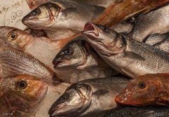 Der Fischmarkt an der Rialto-Brücke