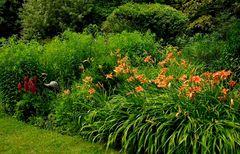 Der Flamingo in meinem Garten ...