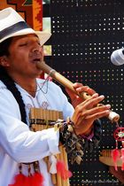 Der Flötenspieler