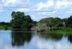 Der Fluss - die Natur ... für Tina
