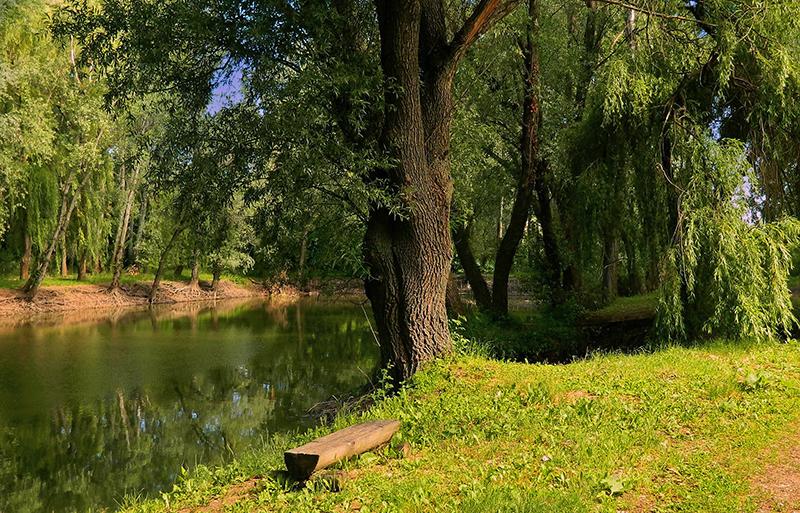 Der Fluss in der Nähe 2.