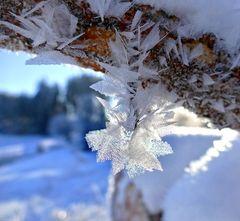Der Frost als Künstler