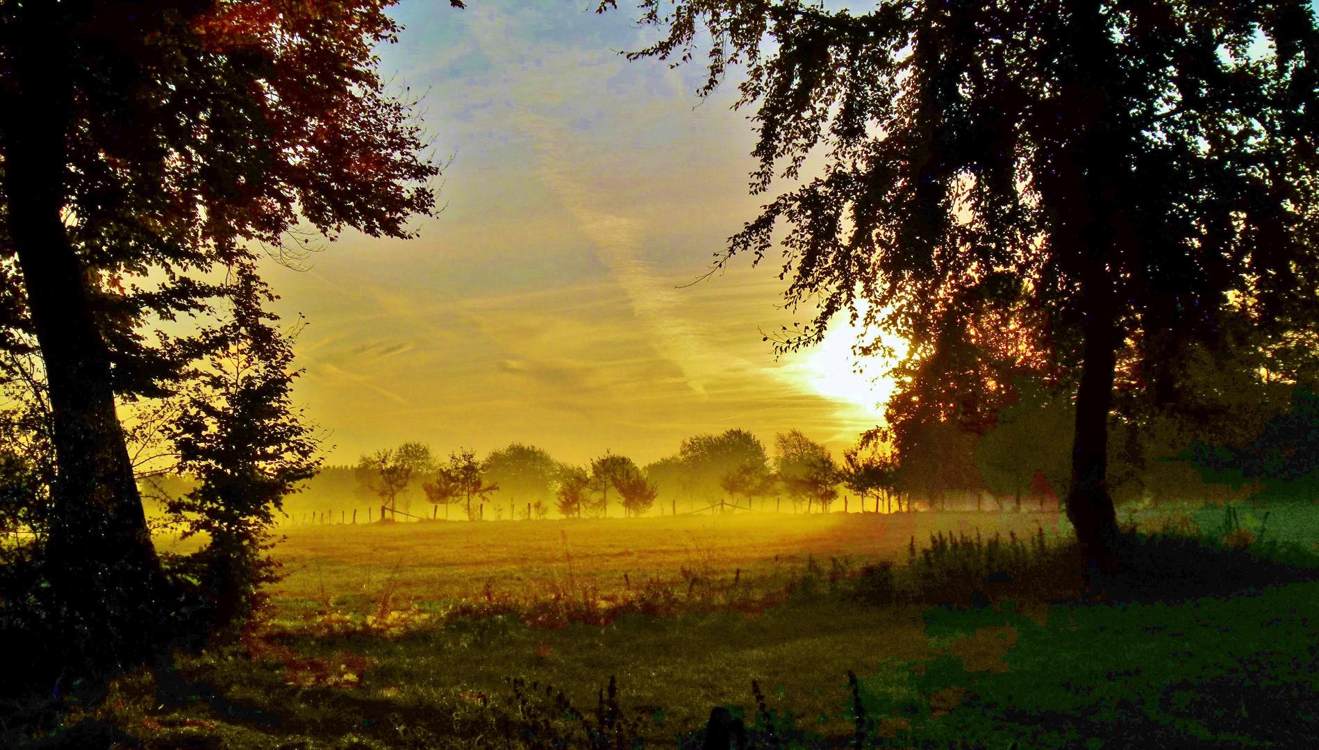 Der frühe Morgen..