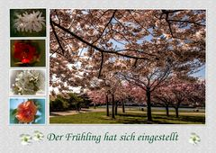 Der Frühling hat sich eingestellt