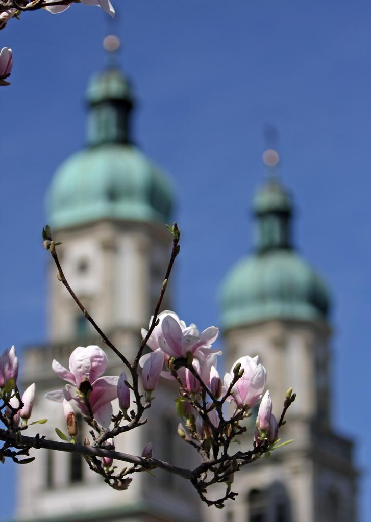 Der Frühling kommt :-)