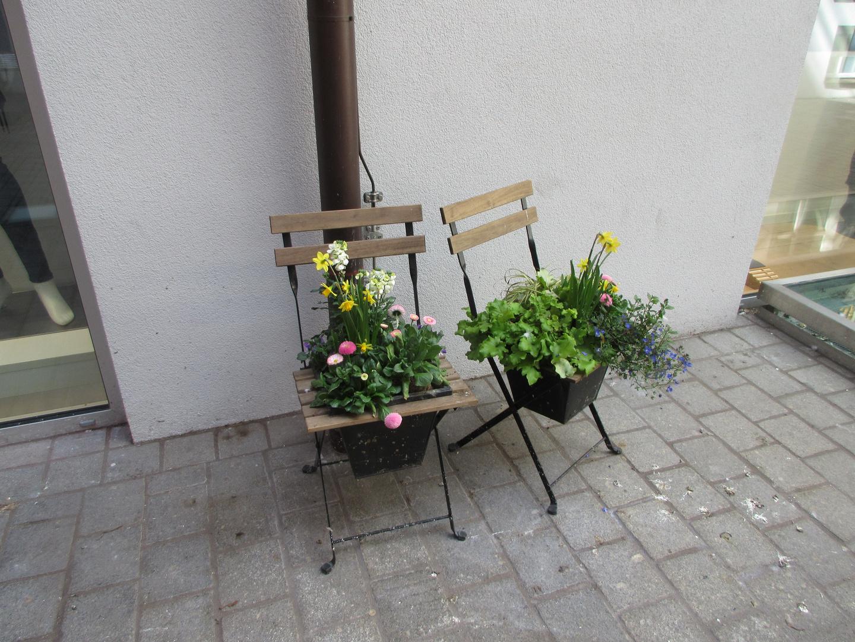 Der Frühling nimmt Platz