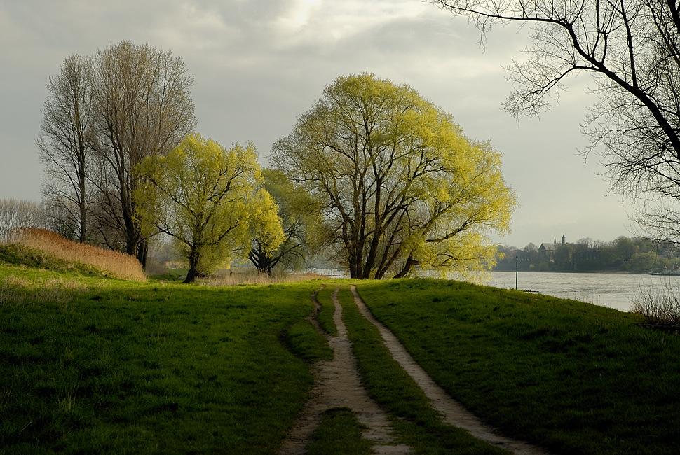 Der Frühling setzt sich durch von Paul Wessel