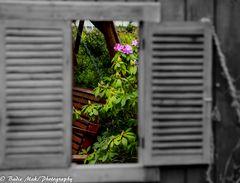 Der Frühling wartet vor der Tür