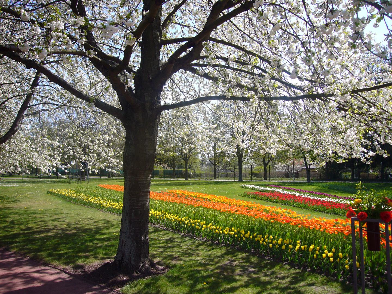 Der Frühling zeigt sich