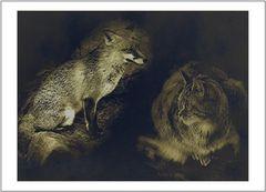 Der Fuchs und die Katze