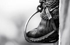 Der Fuß des Reiters ....