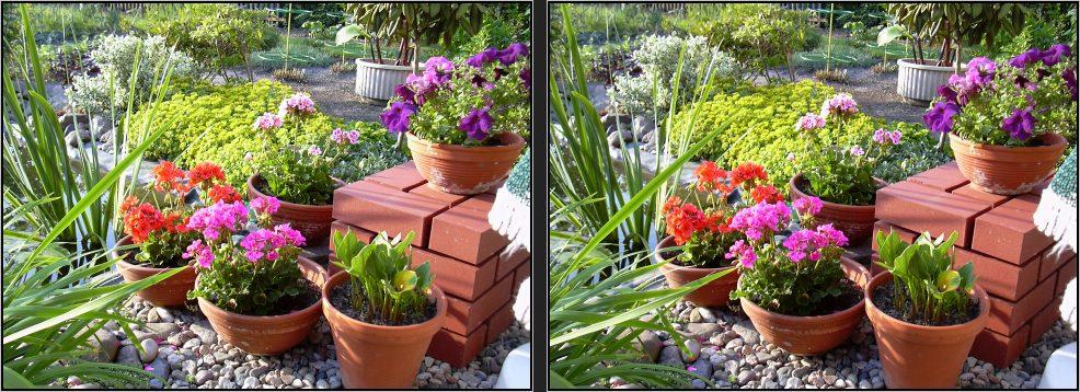 Der Garten im Sommer 2006