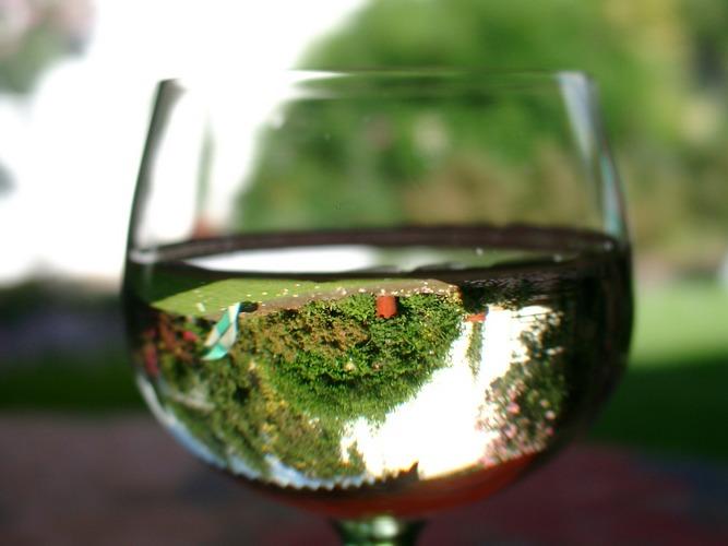 Der Garten im Weinglas