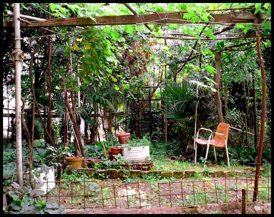 Der Geheime Garten Foto Bild Landschaft Garten