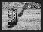 der geheime Garten beginnt gleich hinter dieser Tür