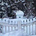 Der geheime Garten im Winter