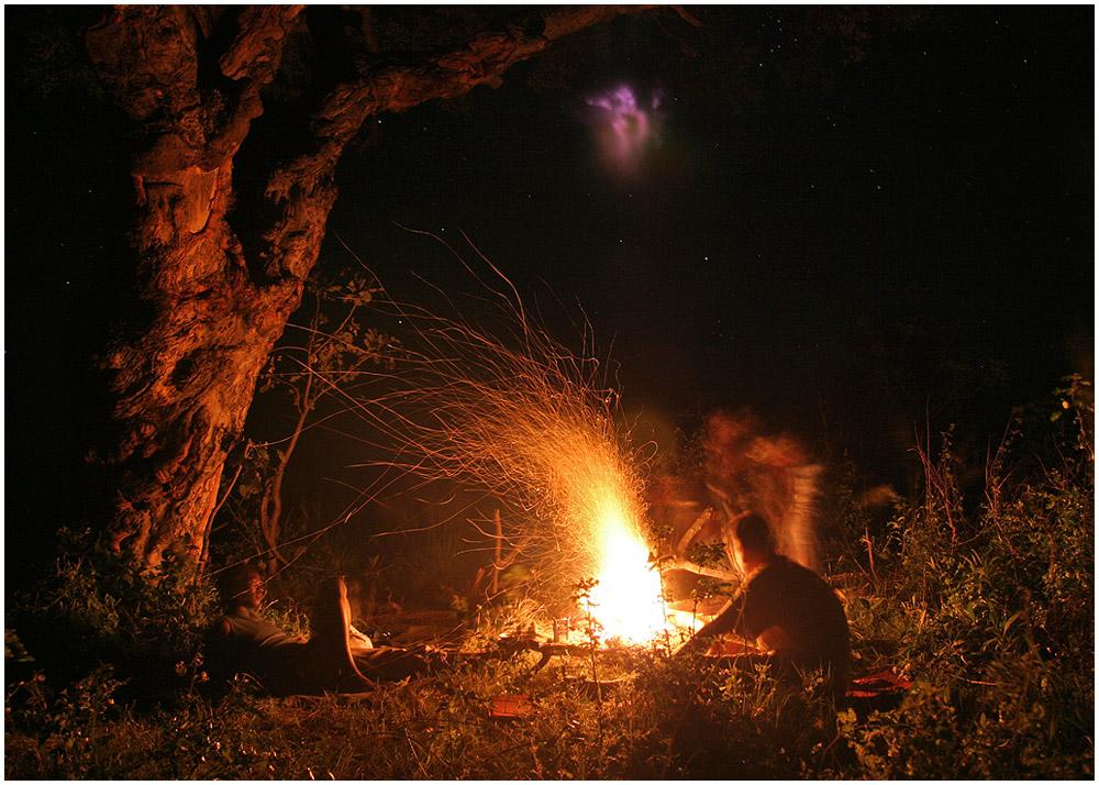 Der Geist unter dem Marulabaum