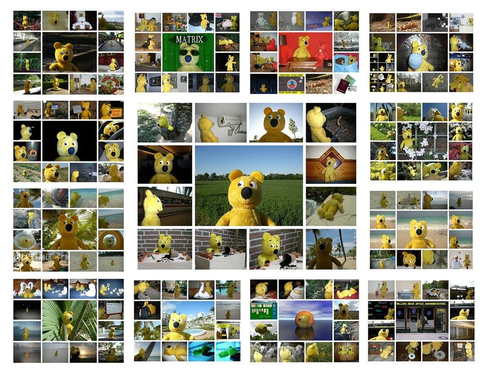 Der gelbe Bär 2007
