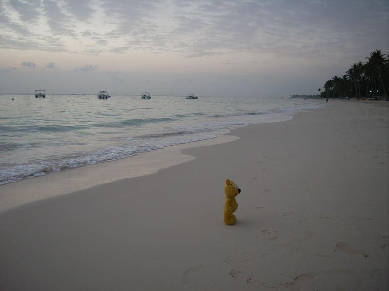 Der gelbe Bär alleine am Strand