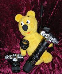 Der gelbe Bär auf Analog-Foto-Tour (1)