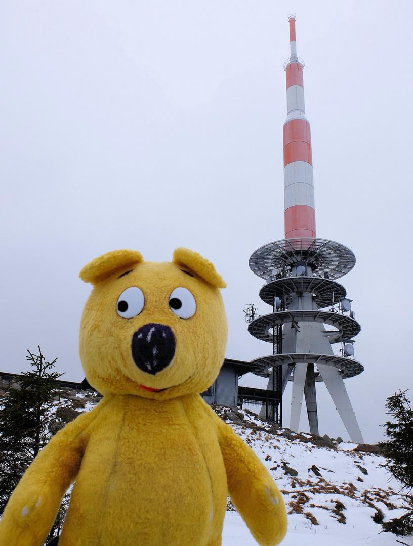 Der gelbe Bär auf dem Brocken