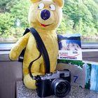 Der gelbe Bär auf dem Rursee