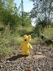 """Der gelbe Bär auf der """"Railroad to nowhere"""""""
