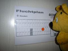Der gelbe Bär auf Dienstreise (2)