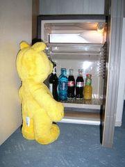 Der gelbe Bär auf Dienstreise (3)
