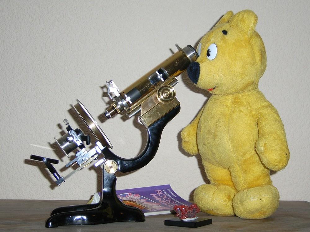 Der gelbe Bär bei der Mineralienbestimmung
