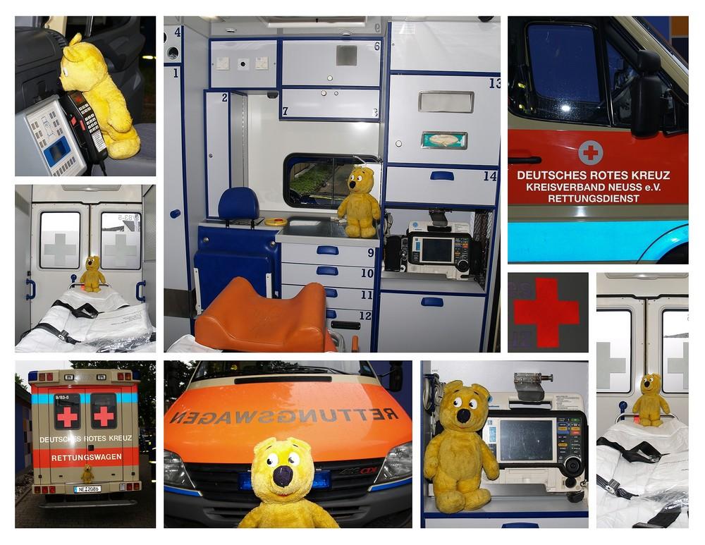 Der gelbe Bär beim Deutschen Roten Kreuz