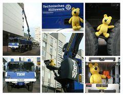 Der gelbe Bär beim THW (1)