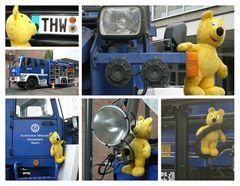 Der gelbe Bär beim THW (2)