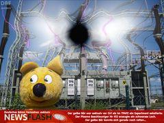 Der gelbe Bär berichtet exklusiv vom schwarzen Loch