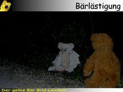 Der gelbe Bär Bild-Lexikon - Bärlästigung