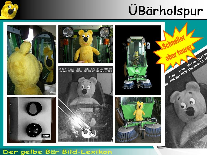 Der gelbe Bär Bild Lexikon - ÜBärholspur