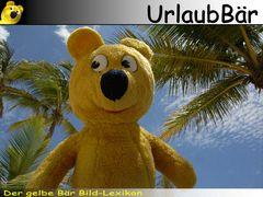 Der gelbe Bär Bild Lexikon - UrlauBär