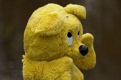 Der gelbe Bär empfiehlt - Mückenschutz und Zeckenschutz