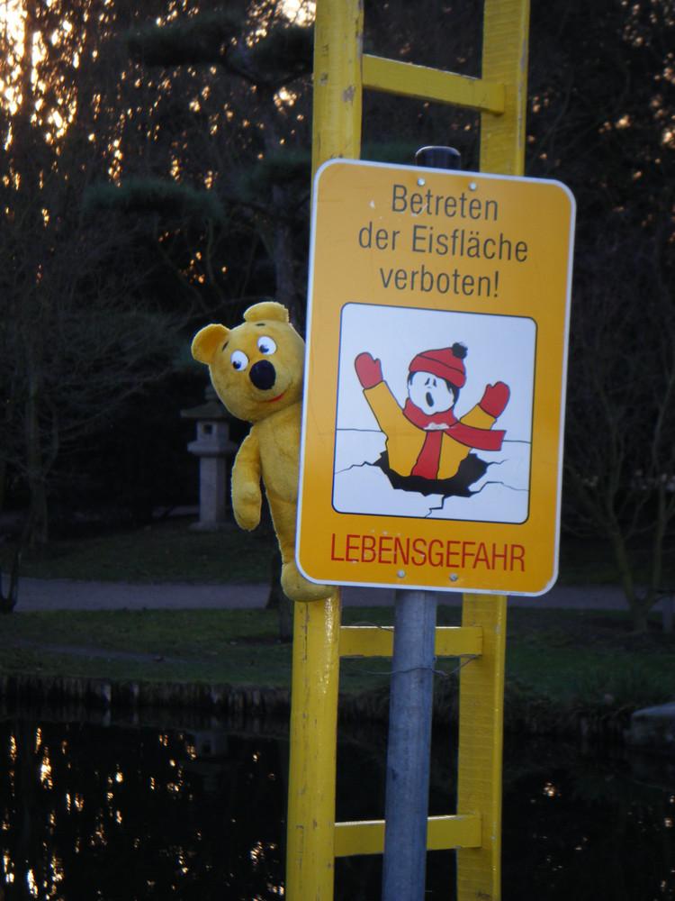 Der gelbe Bär empfiehlt - Rettungsleitern beschützen