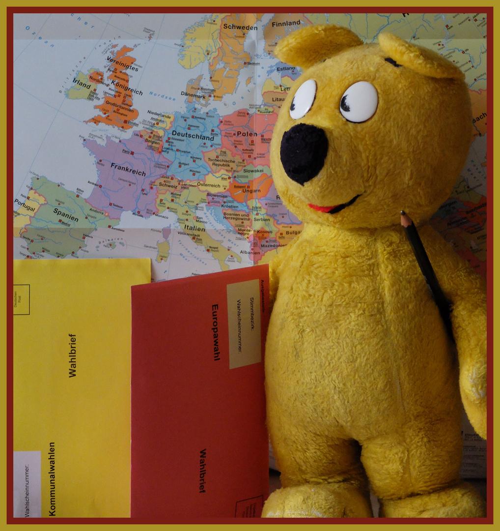 Der gelbe Bär empfiehlt...wählen gehen !