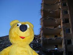 Der gelbe Bär empfieht - Hotelzimmer vor Buchung zeigen lassen
