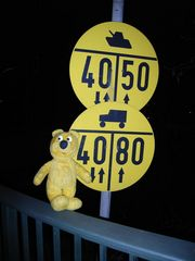 Der gelbe Bär entdeckt: Rollschuhe dürfen schneller wie Panzer fahren